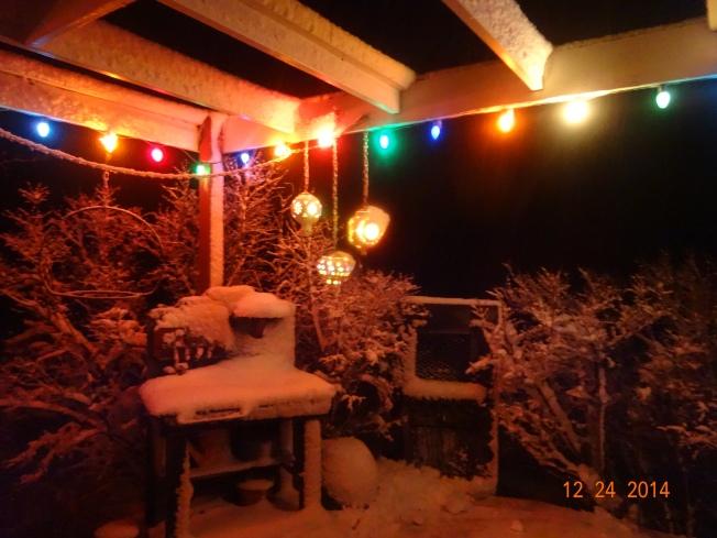 Christmas Eve Storm